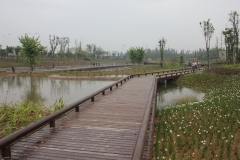 Wetland park Deyang, China (Credit: Lenneke Knoop, MetaMeta, 2016)